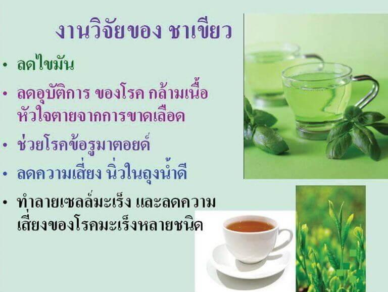 งานวิจัยของชาเขียว