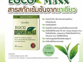 EGCG Maxx